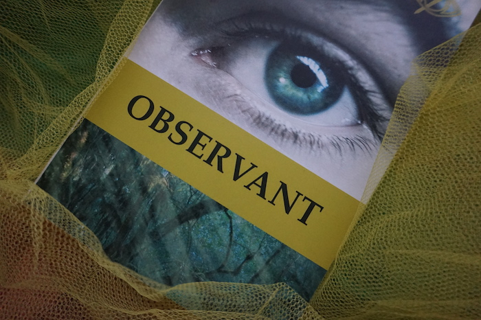 observant2