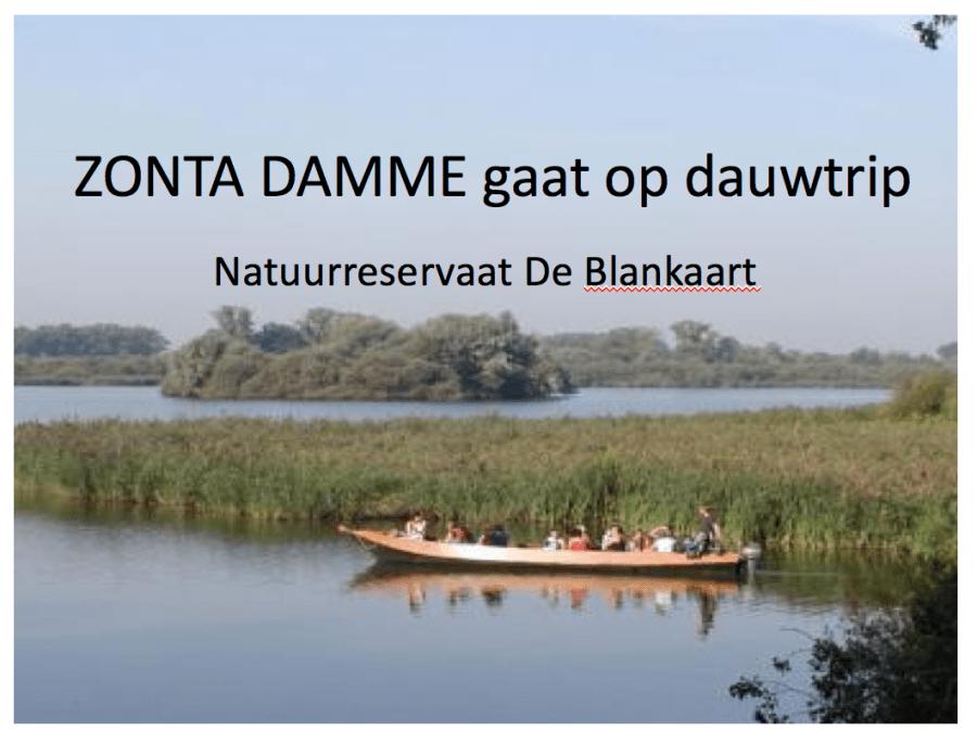 dauwtrip