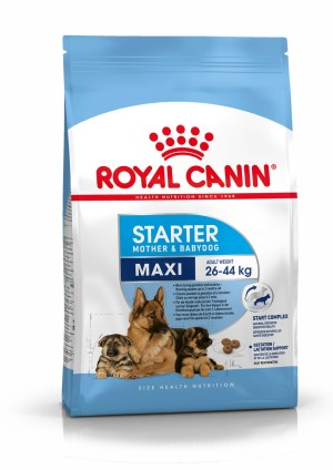Royal Canin (Роял Канин) Maxi Starter