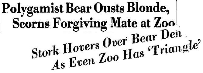 WaPo headlines