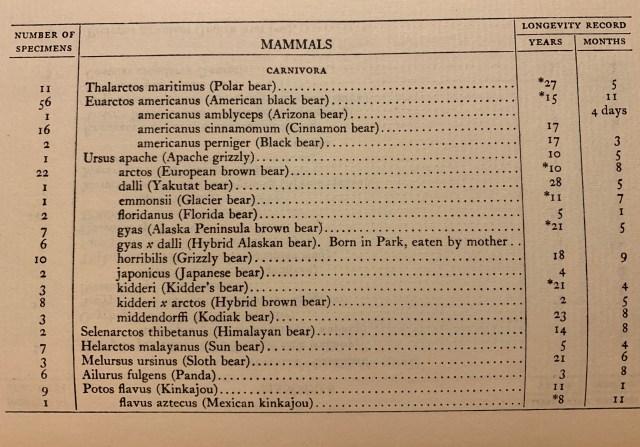 list of bears