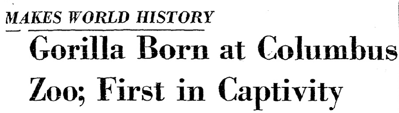Columbus Dispatch front-page headline, December 23, 1956.
