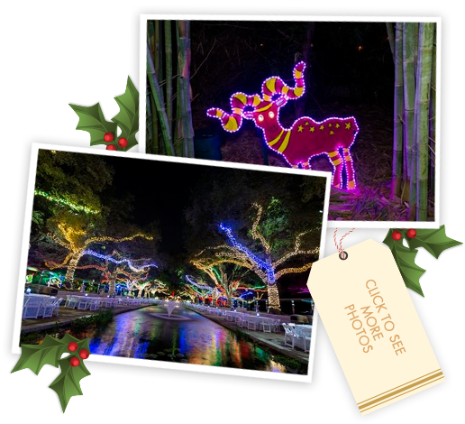 Zoo Lights Houston Tickets