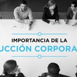 Importancia de la Inducción Coorporativa