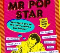 #BookReview of Dear Mr Pop Star by Derek & Dave Philpot  @derekphilpott @unbounders