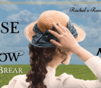 #BookReview of The Promise of Tomorrow by AnneMarie Brear @annemariebrear @rararesources