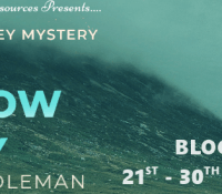 #BookReview of A Hollow Sky by M. Sean Coleman @mseancoleman @rararesources #giveaway