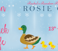 #BookReview of Snowed in at the Little Duck Pond Cafe by Rosie Green @Rosie_Green1988 @rararesources