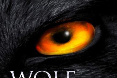 #BookReview of Wolf Land by Jonathan Janz @jonathanjanz @annecater @flametreepress #randomthingstour #mustreadauthor #horror