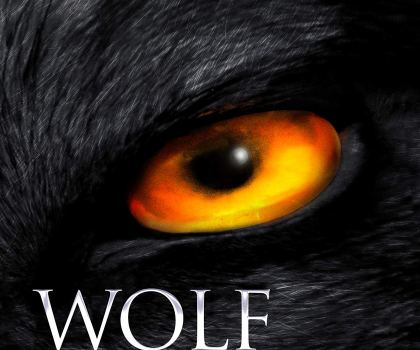 #BookReview of Wolf Land by Jonathan Janz @jonathanjanz @annecater @flametreepress #randomthingstour #mustreadauthor #horror