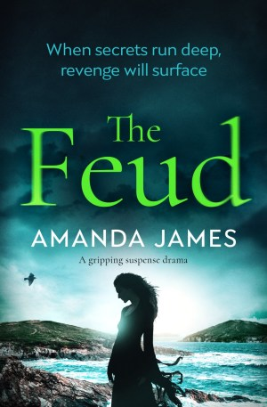 Excerpt Time! The Feud by Amanda James @amandajames61 @Bloodhoundbook #Excerpt #AuthorTakeOver