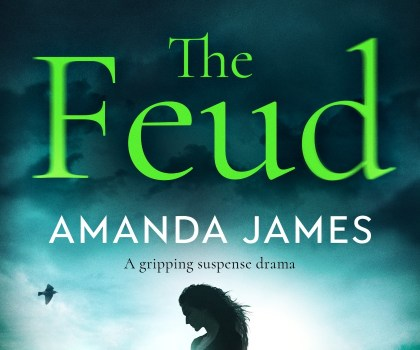 #BookReview of The Feud by Amanda James @akjames61 @bloodhoundbook