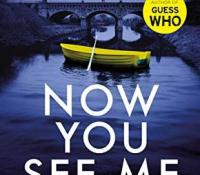 #BookReview of Now You See Me by Chris McGeorge @crmcgeorge @orionbooks @Tr4cyF3nt0n #nowyouseeme