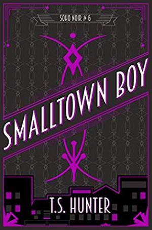 SmallTown Boy by T.S Hunter  @TSHunter5 @RedDogTweets #BookReview #SohoNoir #ItCantBeTheEnd