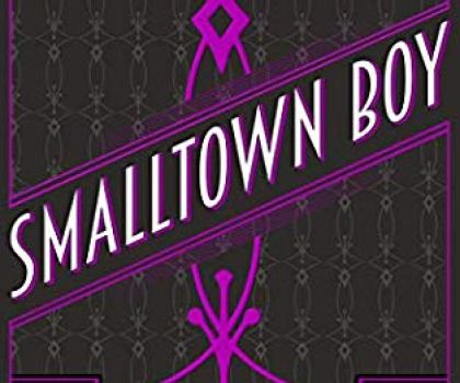 SmallTown Boy by T.S Hunter  @TSHunter5 @RedDogTweets #BookReview #SohoNoir #ItCantBeTheEnd