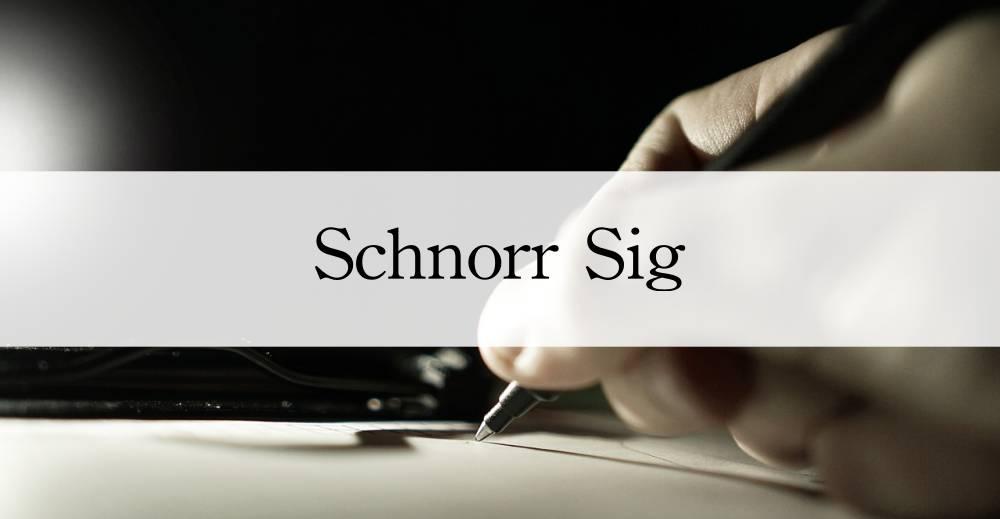 シュノア署名