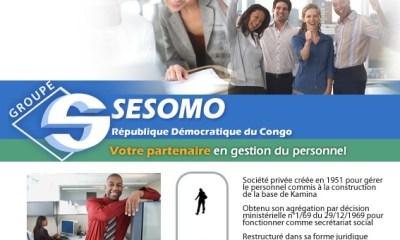RDC : SESOMO recherche un Responsable Administratif et Financier 20