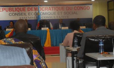 RDC : l'action du Conseil économique et social plombée par la mauvaise gestion publique ! 23