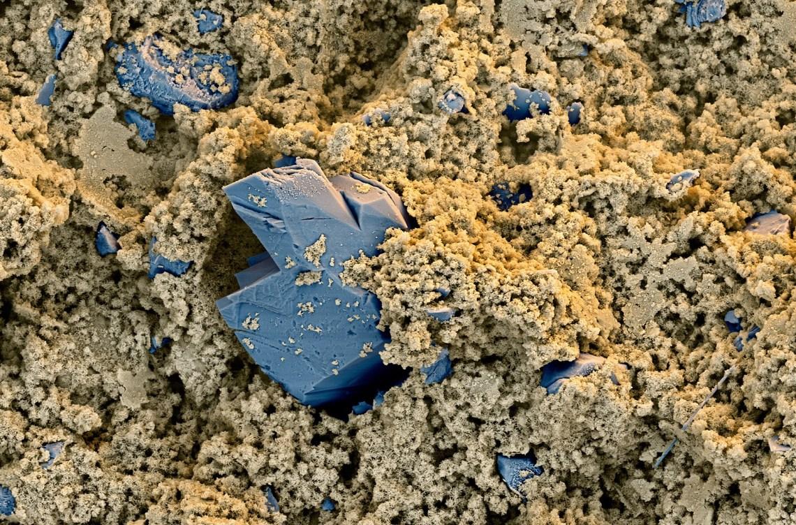 Nanoscale 960_1 X-Seed bx.jpg