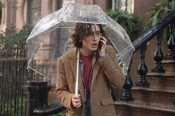 un dia lluvioso en nueva york e1573103054740