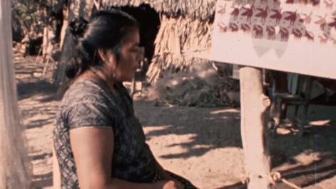 Cine indígena en México
