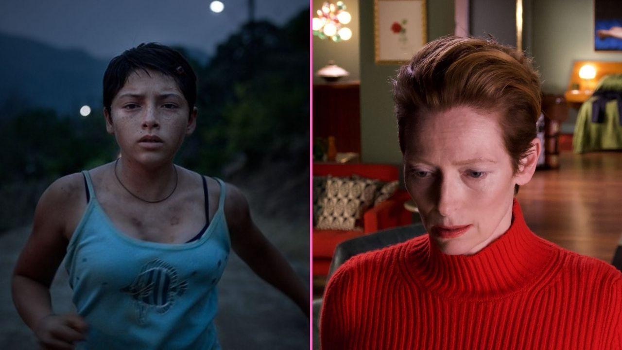 Estas son las películas que te esperan en La Casa del Cine