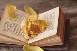 libri-300x198 Libreria esoterica il Crogiuolo. Librai gentili e ottimi insegnanti Costume e Società Milano Misteriosa