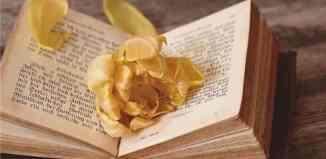 libri esoterici