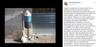 Carmela rozza e la spazzatura