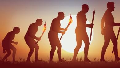 Photo of La evolución humana no ha parado: es más, hay razones para pensar que está más acelerada que nunca