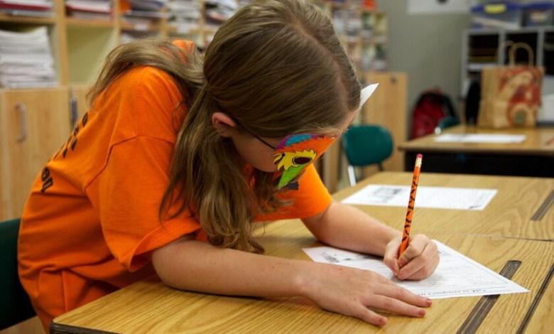 mi-hijo-no-va-al-colegio,-lo-educo-en-casa:-la-pandemia-como-impulso-del-'homeschooling'