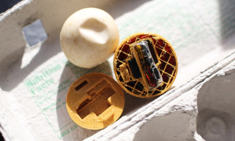 cientificos-crean-huevos-falsos-con-gps-para-combatir-el-trafico-ilegal-de-tortugas-en-costa-rica