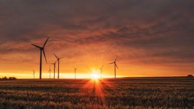 espana-aprueba-su-primera-ley-de-cambio-climatico:-que-medidas-y-objetivos-se-establecen-en-energias-renovables-e-impulso-del-coche-electrico