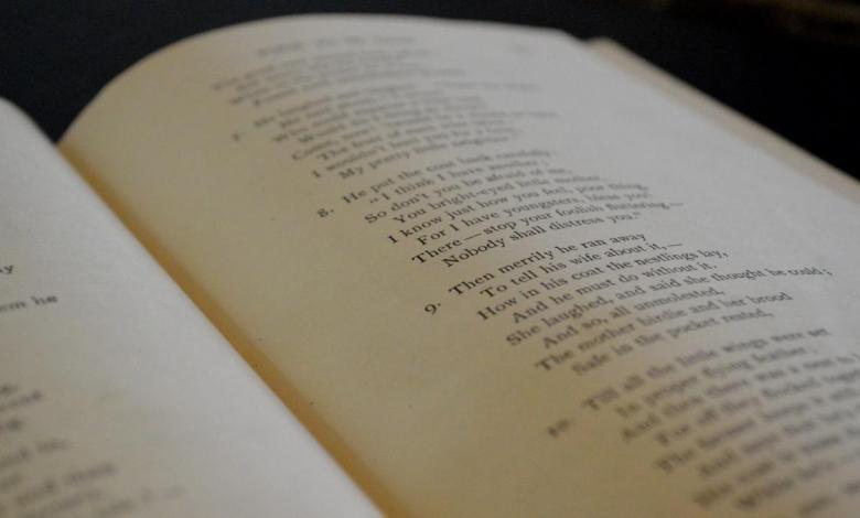la-noche-de-los-libros-vuelve-a-madrid:-conciertos,-lecturas-y-encuentros-digitales-con-los-autores