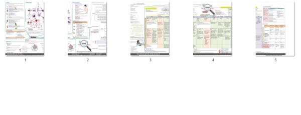asthma_concept_map_printable_version
