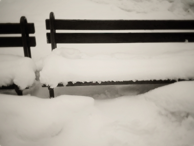 outside benches with heaps of snow on them