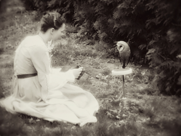 a girl and her owl