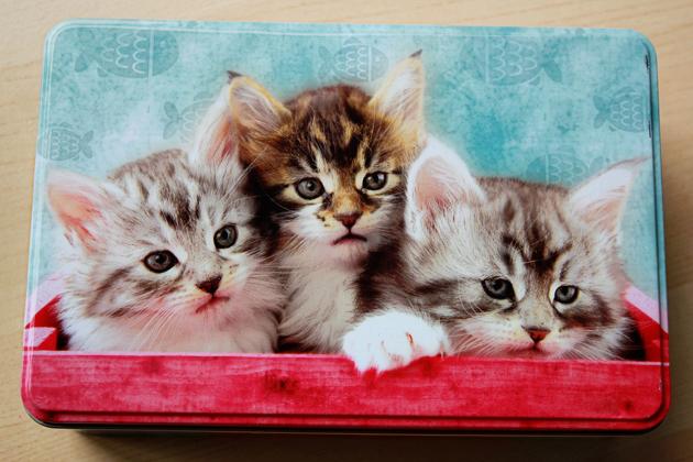 cat box closed