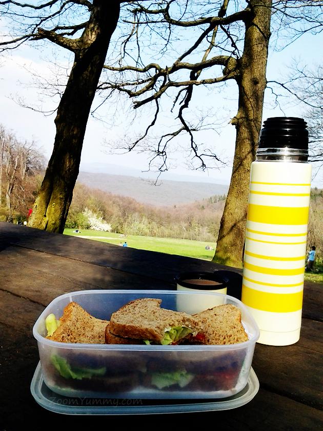 picnic in spring