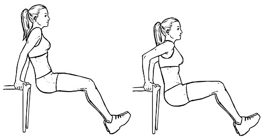 Image result for chair triceps dips