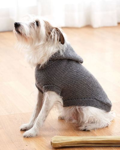 sparkys-favorite-knit-sweater_large400_id-864085