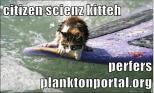 planktonportallolcat