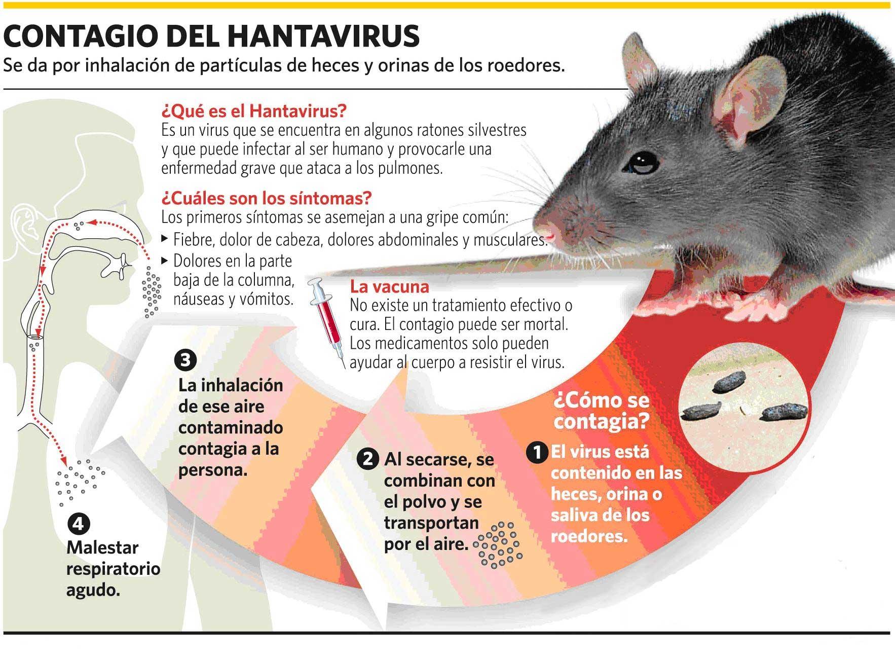 Hanta | Zoonosis y Vectores