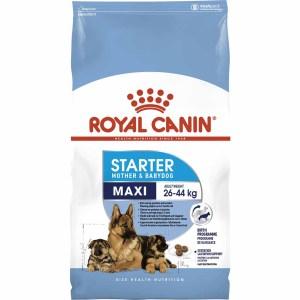 Сухой корм для щенков до 2 месяцев, беременных и кормящих сук крупных пород Royal Canin MAXI STARTER MOTHER & BABYDOG
