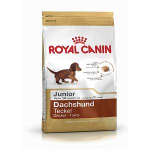 Сухой корм для щенков породы Такса Royal Canin DACHSHUND JUNIOR (до 10 месяцев)