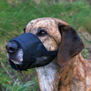 Намордник закрытый для собак Trixie черный, нейлон с сеткой