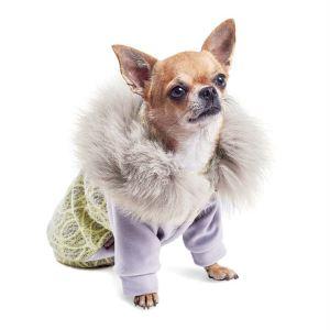 """Толстовка для собак Pet Fashion """"Тиффани"""" 2018"""