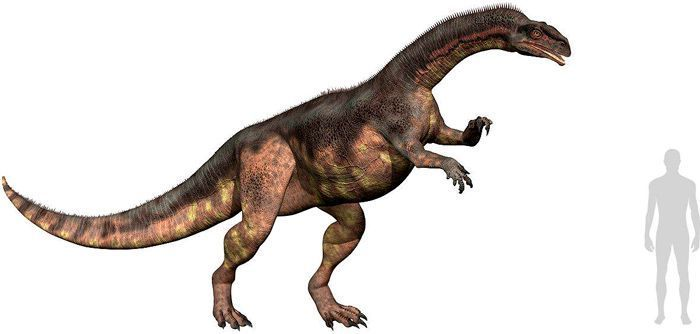 Plateosaurus (Plateosauridae). Por Linda Bucklin   Shutterstock.com