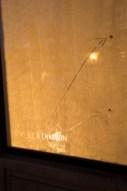 Zooscope_0035