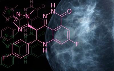 Какие гормональные препараты применяются в животноводстве